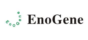 EnoGene
