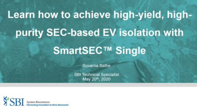 Easy SEC-based EV isolation with high yields in just one fraction
