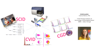 The role of Flow Cytometry in the laboratory approach of Primary Immunodeficiency