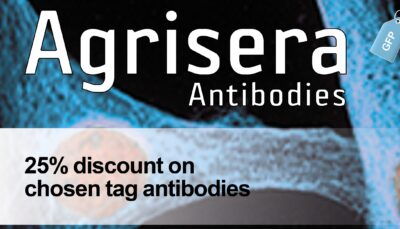 Tag antibody promotion